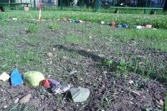 Na delavnicah v OŠ smo sadili travo